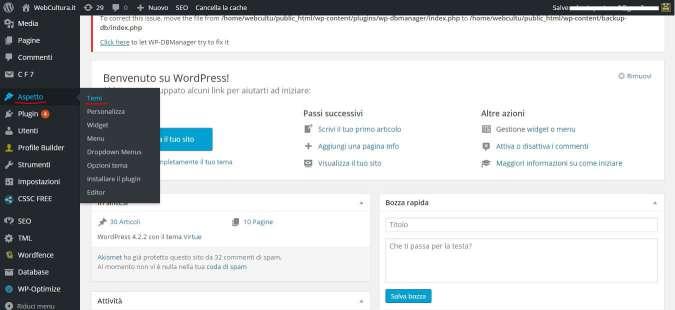 installare un tema su wordpress